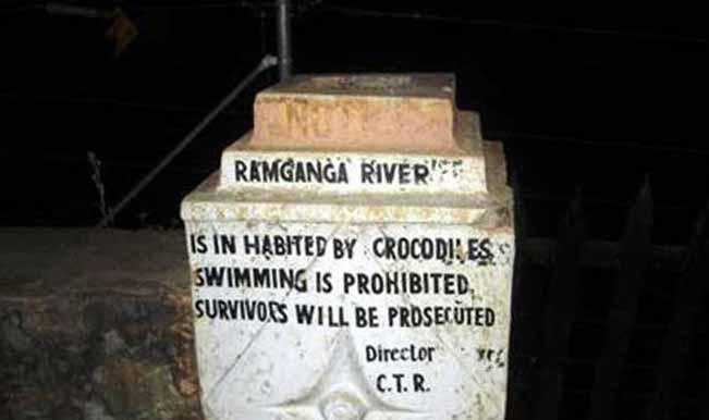 Checkmate - Don't swim here