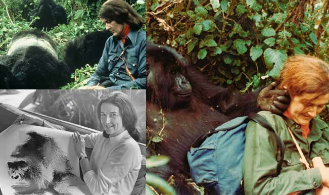 dian fossey - life and death essay It had been an unusually quiet christmas at karisoke, american primatologist dian fossey's primitive research camp 9,000 feet up the the strange death of dian fossey subscribe.