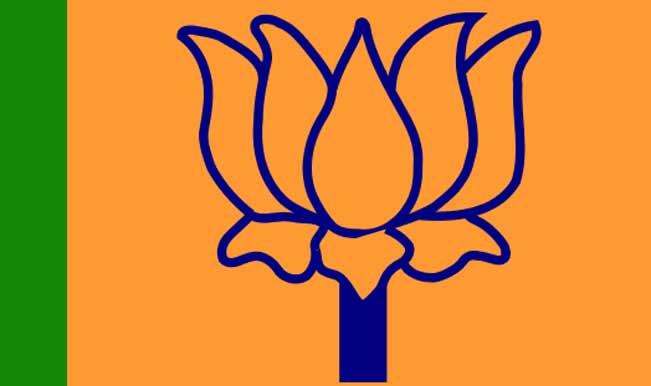 750px-BJP-flag.svg