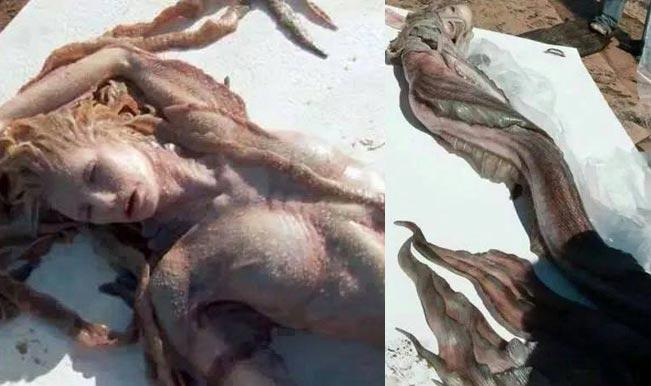 image of mermaid found in gujarat