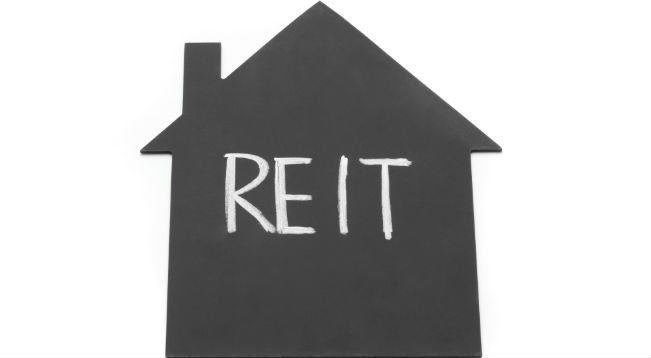 REIT [Representational only]