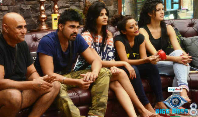 Bigg Boss 8 Day 16: Babbar vs Lamba, which Family will win the luxury task this week