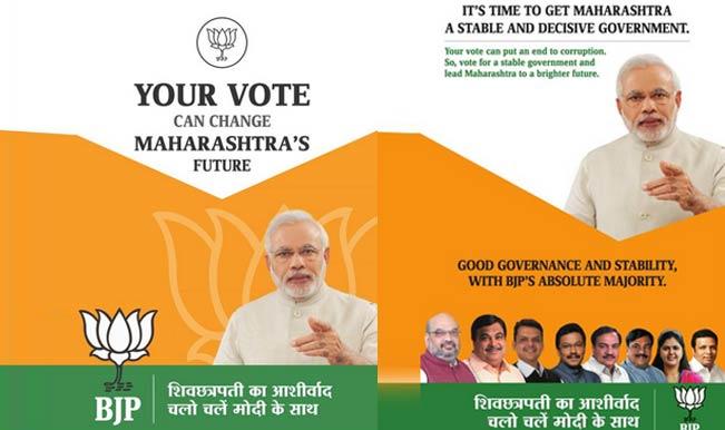 Politics essays advertisements campaigns voters