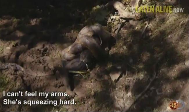 Man Eaten Alive by Anaconda: Watch Full Video of Paul