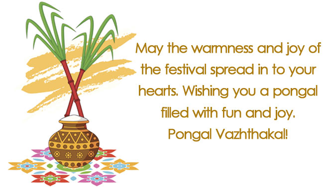 Pongal 2015 messages best pongal sms whatsapp facebook messages pongal 2015 messages best pongal sms whatsapp facebook messages to send pongal greetings buzz news india m4hsunfo