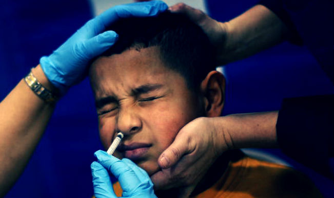 swine flu article At least one person in five was infected with swine flu during the first year of the pandemic in 2009, according to data from 19 countries.