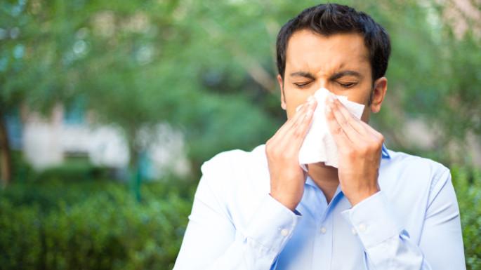 adult allergies