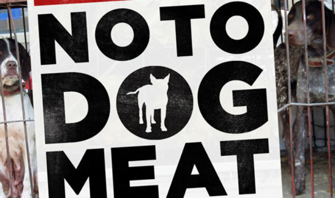 no to dog meat 2