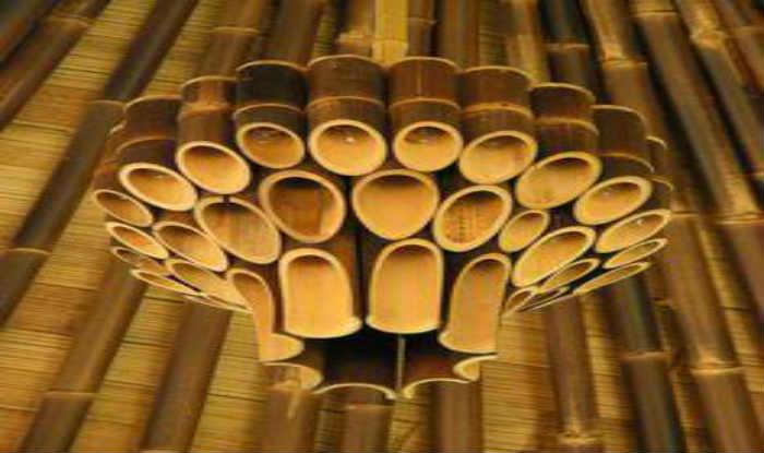 International bamboo conference begins in manipur for Art decoration international pvt ltd