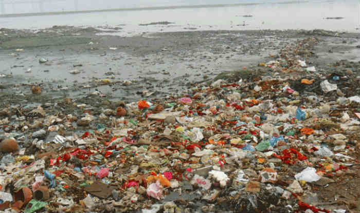 To Clean Ganga River, Government to Utilise 'Sewage-eating ...