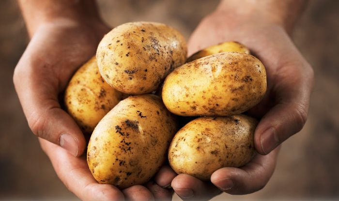 PepsiCo Withdraws Case Against Gujarat Potato Farmers