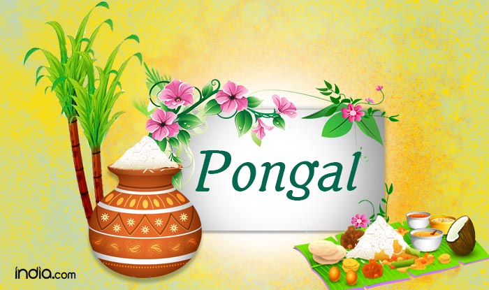Pongal 2017: Happy Pongal Wishes, Whatsapp Status, Facebook Messages, SMS, Gif Images & DP to share on this Pongal 2017!