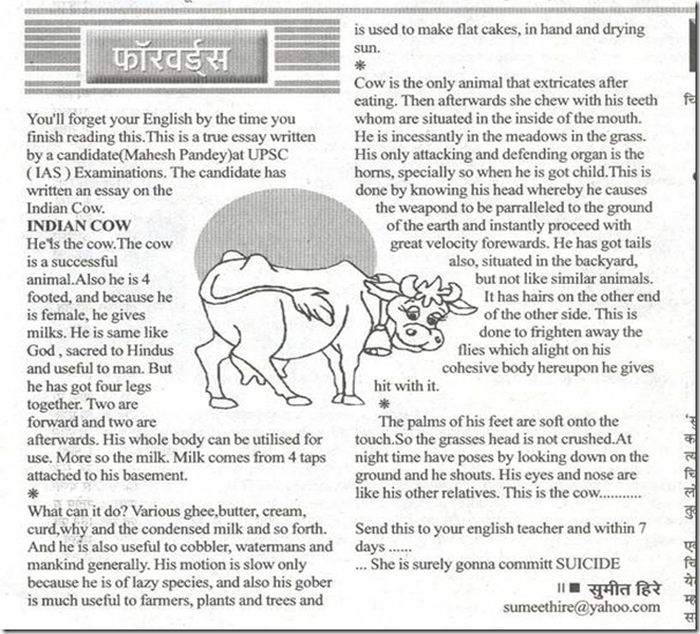 Essay On Cow In English