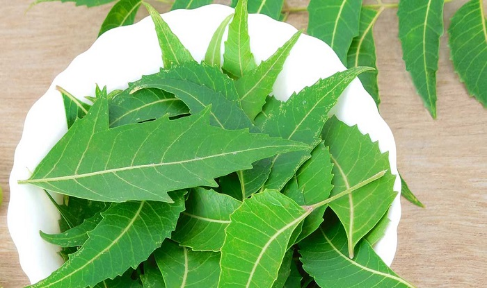 36-Amazing-Benefits-And-Uses-Of-Neem-For-Skin-Hair-And-Health