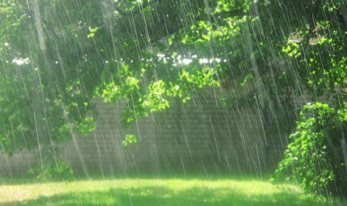 Monsoon Slightly Delayed In Kerala Imd India Com