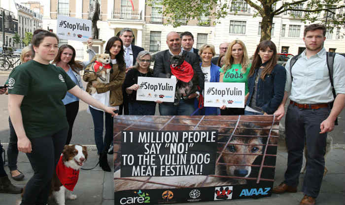 China's Yulin dog meat eating festival to be called off? 11 ...