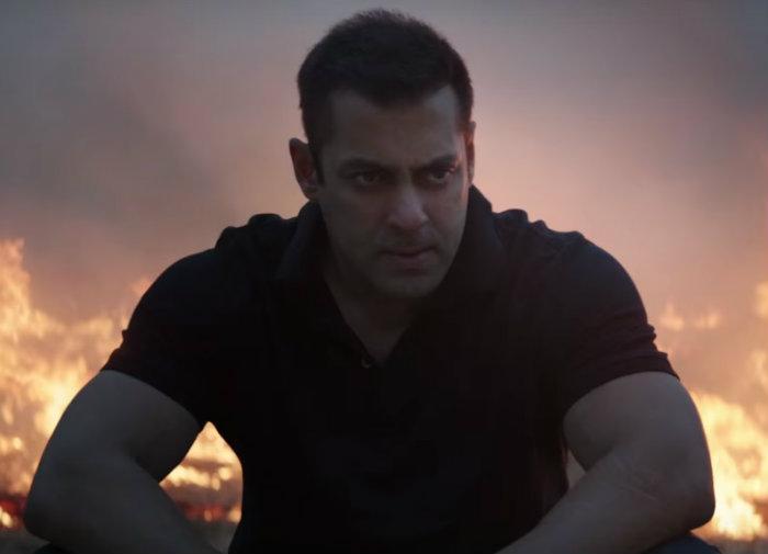 Salman Khan sultan trailer (19)