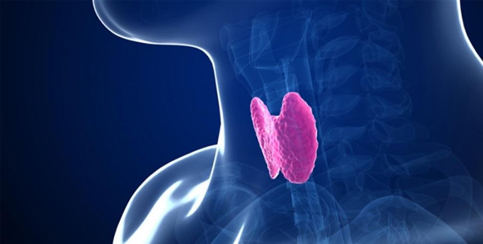 ek_thyroid-1