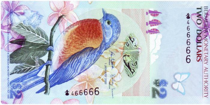 Bermudian dollar