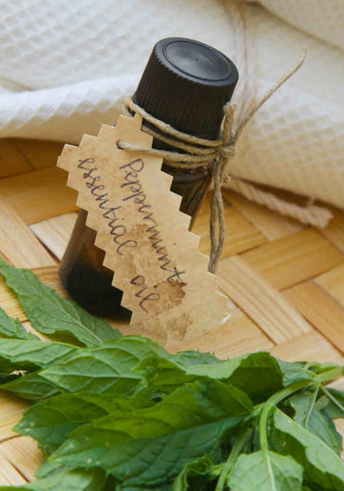 Use peppermint oil