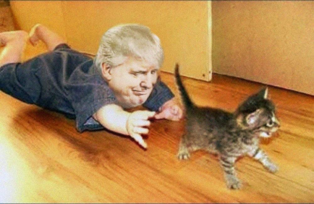 Tiny Trump Is The Latest Internet Meme On Us President Donald Trump
