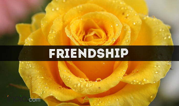Happy rose day 2017 meaning and significance of different rose yellow rose friendship mightylinksfo