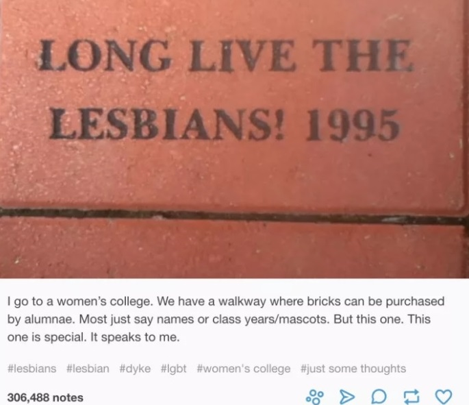 Long Live The Lesbians