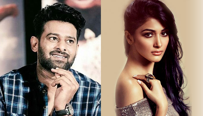 Katrina rejected Prabhas' Saaho, changes mind after Baahubali success?
