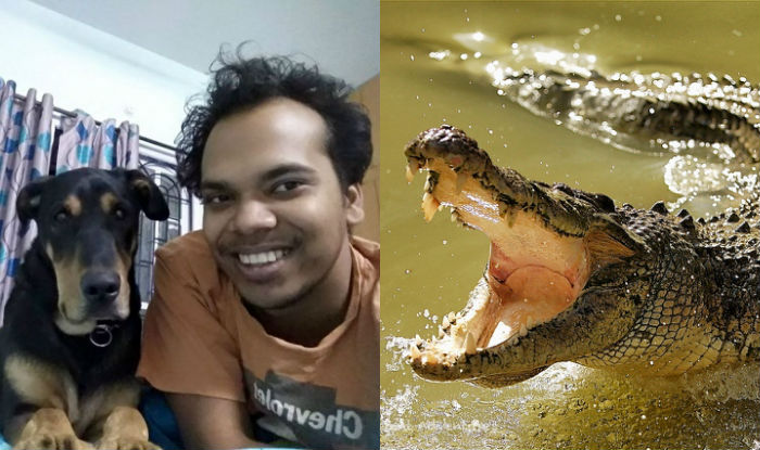 Man's forearm ripped off by crocodile while saving dogs