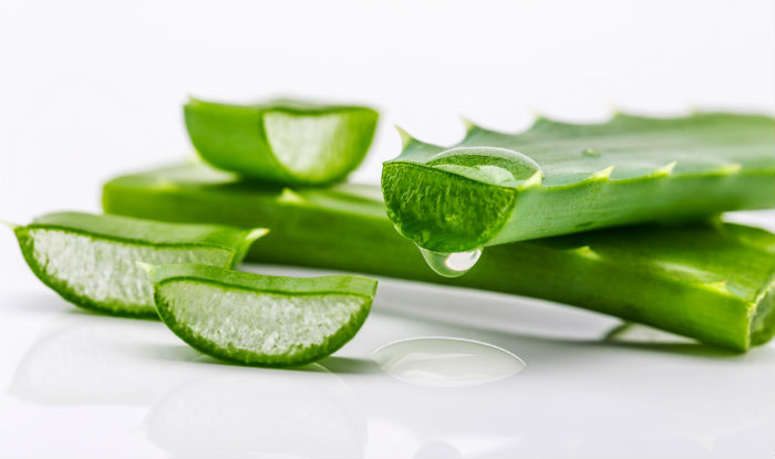 Top 7 beauty benefits of aloe vera gel: Rejuvenate your skin and hair with these aloe vera packs(2)