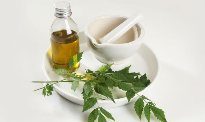 Top 6 beauty benefits of neem: Use homemade neem packs for your skin and hair problems