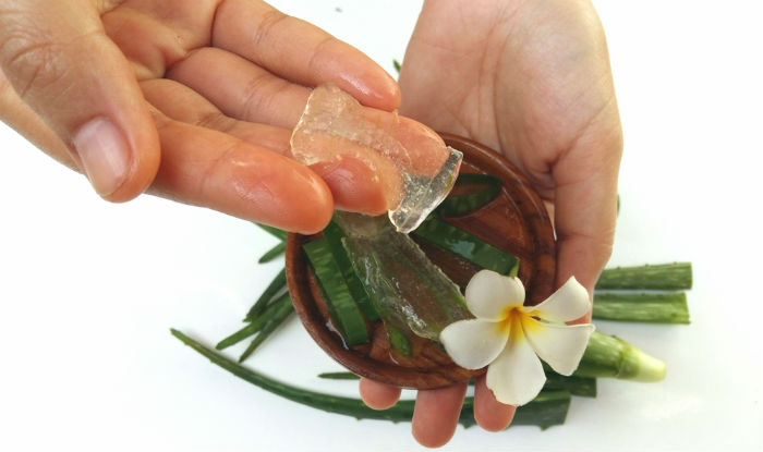 Top 7 beauty benefits of aloe vera gel: Rejuvenate your skin and hair with these aloe vera packs