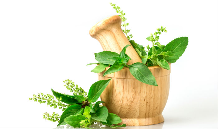 Beauty benefits of Tulsi: 5 reasons to use holy basil for healthy hair and skin