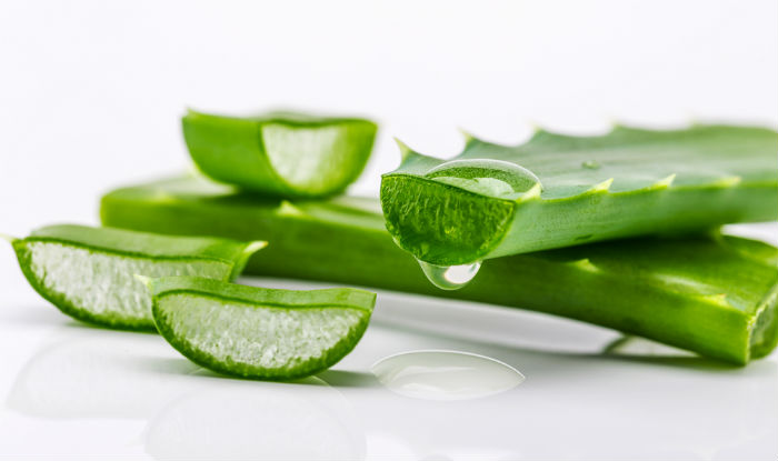 diy aloe vera hair mask