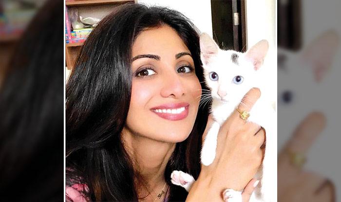 Shilpa Shetty with her cat Queenie