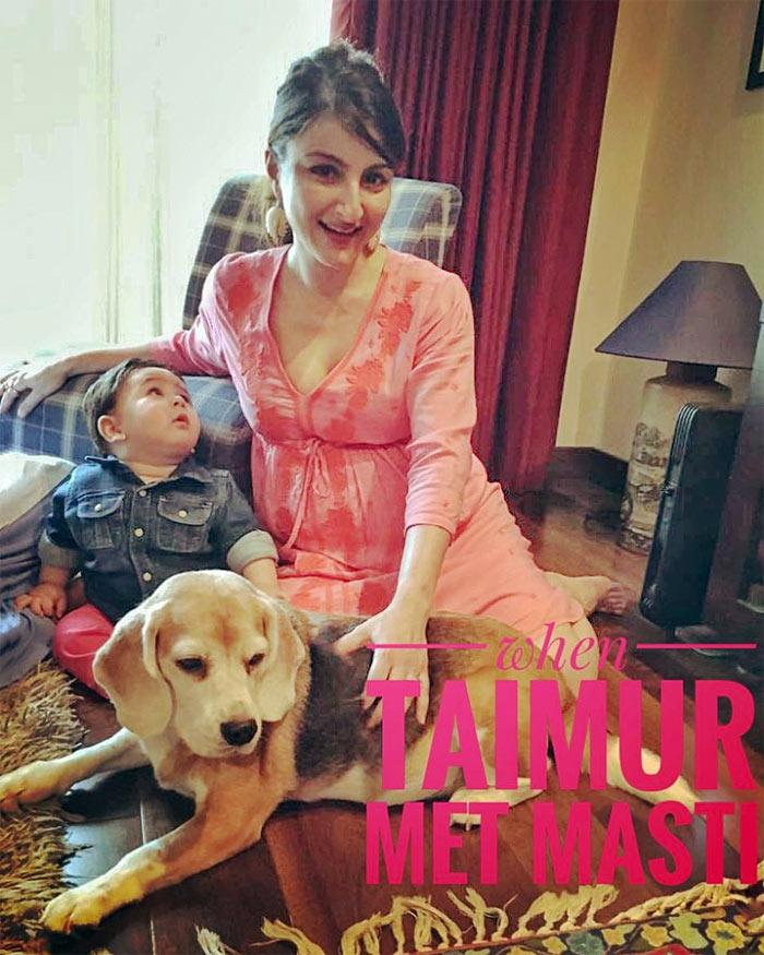 Taimur-9