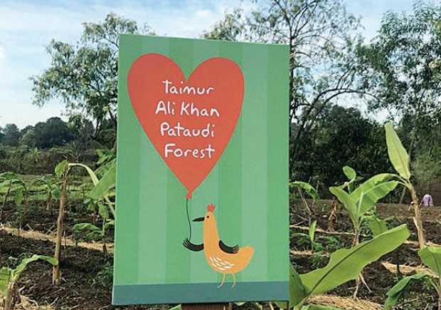 Taimur Ali Khan's special birthday gift has 100 trees!