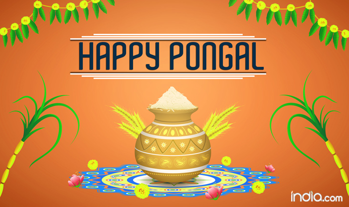 Image result for Images for Pongal/Sankranti 2019