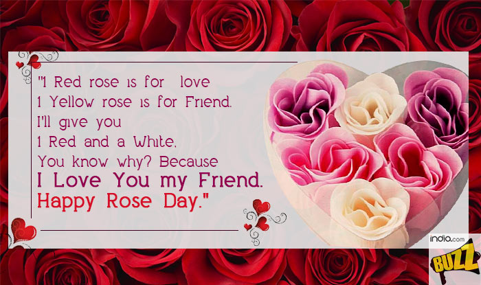 Rose-Day-9