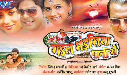 Gail-bhaisiya-pani-me