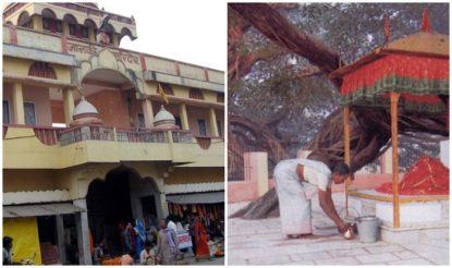 सीतामढ़ी में जानकी मंदिर और पंथ-पाकड़. (फोटो साभारः सीतामढ़ी.एनआईसी.इन)