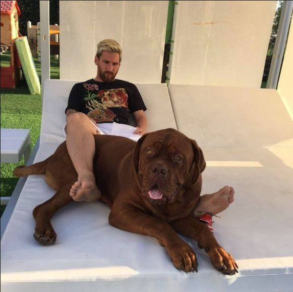 Messi with dog