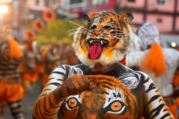 Puli Kali 2017: Images of the Wild Tiger Dance in Thrissur