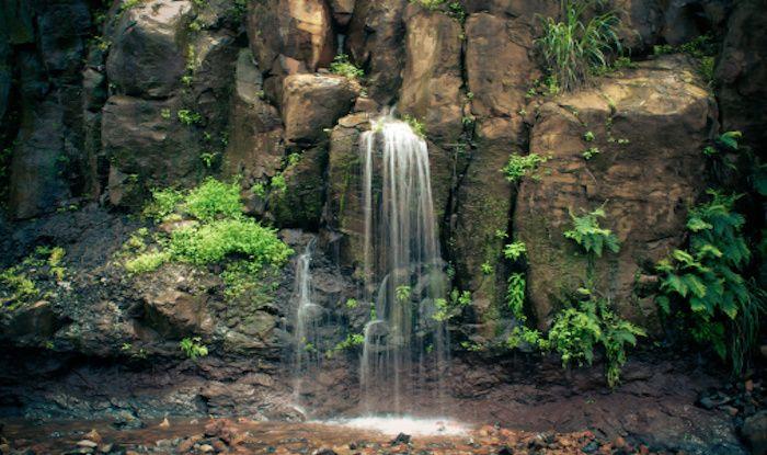South Maharashtra's Iconic Hill Station – Amboli – is a Great Eco Hotspot