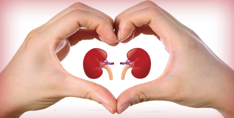 World Kidney Day 2019: Six Tips You Need to Follow to Keep Your Kidneys Healthy