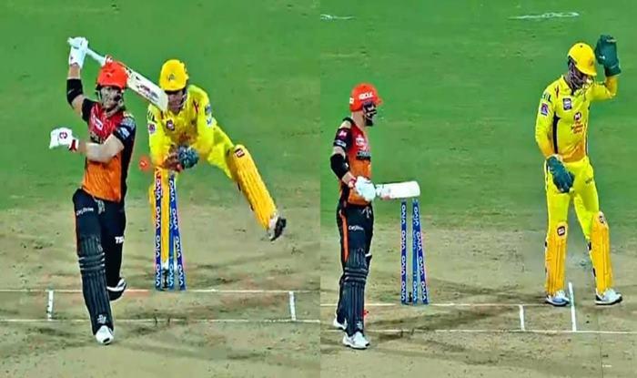 MS Dhoni, David Warner, Dhoni stumps Warner, CSK vs SRH, IPL 2019, Chepauk, Indian Premier League, Latest Cricket News, Chennai Super Kings