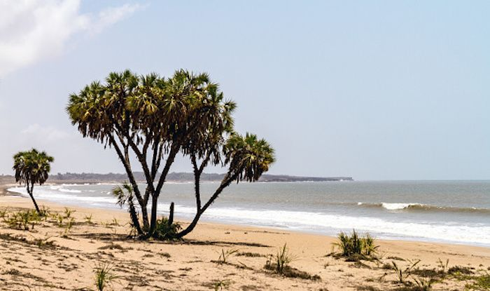Top Beaches of Daman And Diu That Make For a Tranquil Getaway