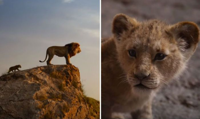 the lion king trailer  disney studios live action film