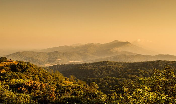 Plan a Trek to Bhramagiri Hills: One of The Highest in Western Ghats