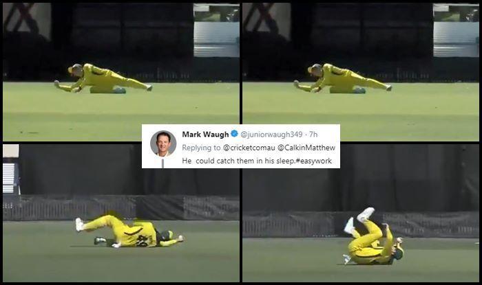 Steve Smith Cricket Australia ICC World Cup 2019